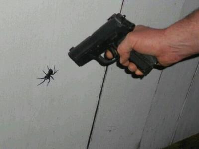 Un uomo punta una pistola contro un ragno
