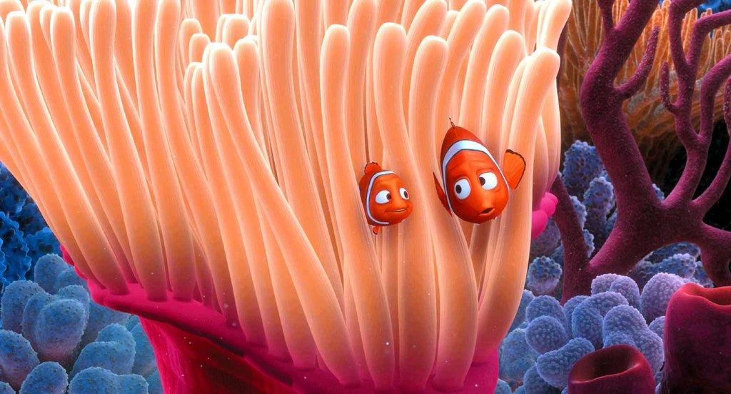 Il pesciolino Nemo in realtà non è mai esistito.