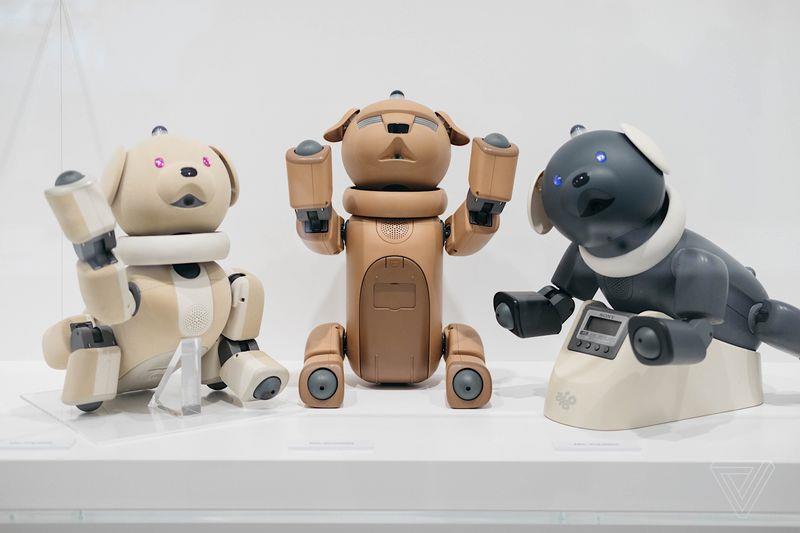 Alcuni robot AIBO