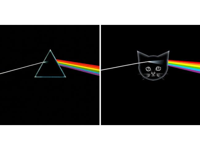 Un gatto fra i Pink Floyd