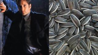 Fox Mulder di X-Files