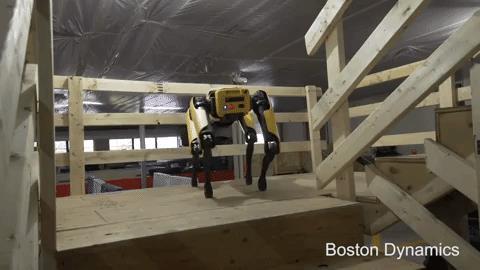 Il cane robot messo a punto da Boston Dynamics che scende le scale