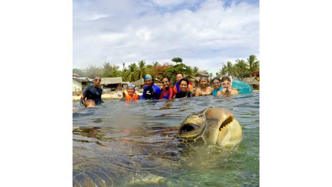 Una tartaruga gigante fa photobombing