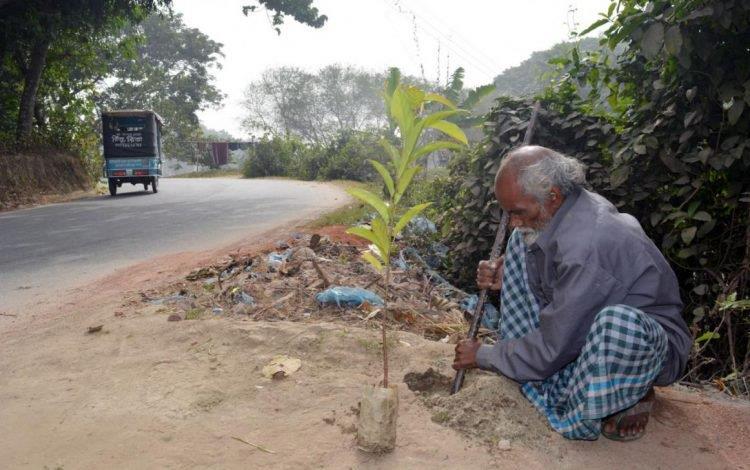 Abdul Samad Sheikh mentre pianta un albero