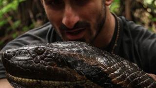 Un uomo e l'anaconda