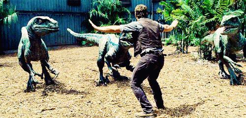 Owen Grady con i velociraptor di Jurassic World