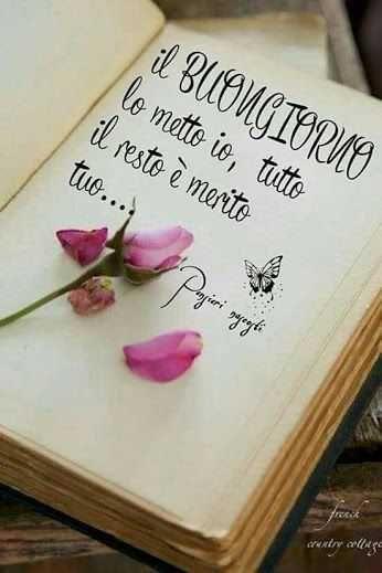 Un libro aperto con una rosa