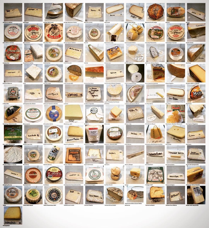 Tutti i formaggi usati per realizzare la pizza ai 101 formaggi