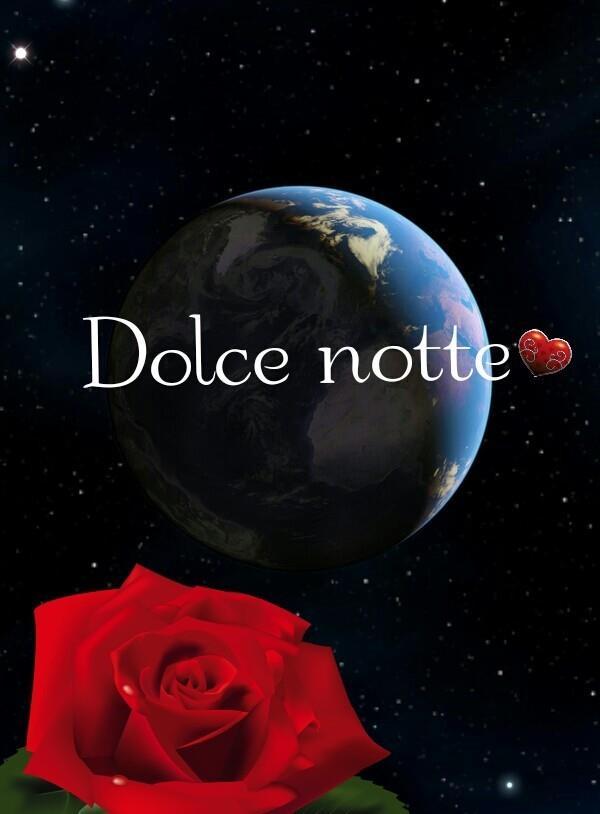 una rosa e un cielo stellato