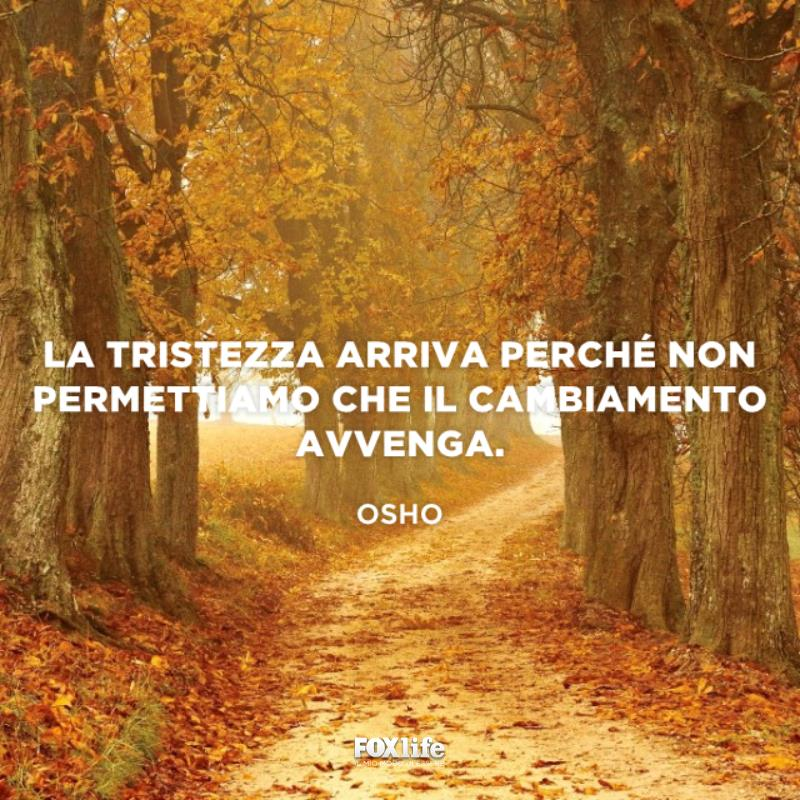 Strada in un bosco d'autunno