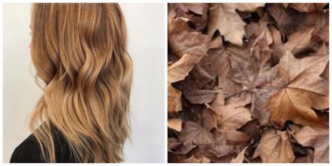 Capelli castani in un collage con foglie