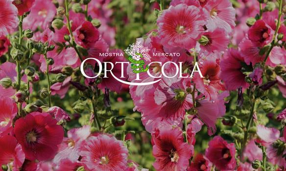 Orticola