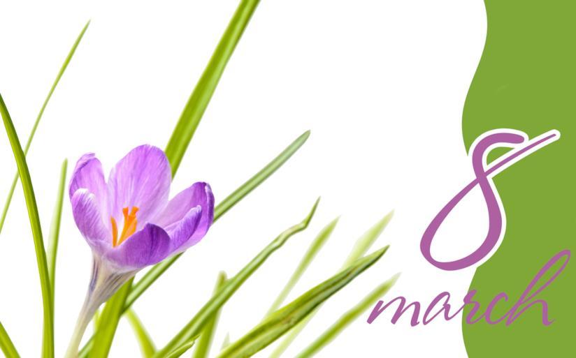 Violetta disegnata con la scritta 8 marzo