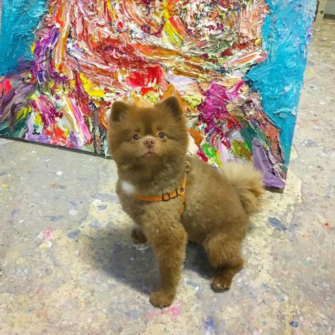 Bert aiuta la sua padrona a dipingere nella sua galleria personale