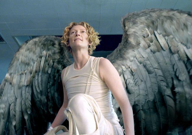 Tilda Swinton bellissimo angelo