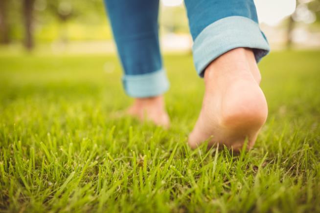 La pianta del piede