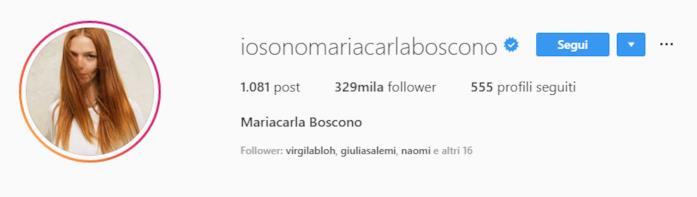 Profilo Mariacarla Boscono