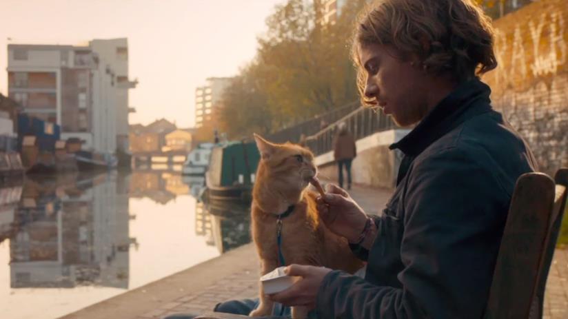 Una scena di A spasso con Bob