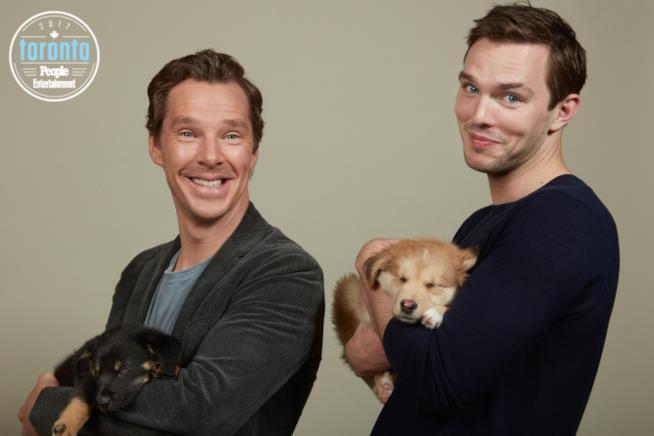 Benedict Cumberbatch e Nicholas Hoult tengono in braccio cuccioli