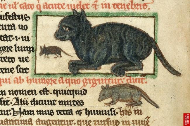 Un'illustrazione di un gatto che caccia topi