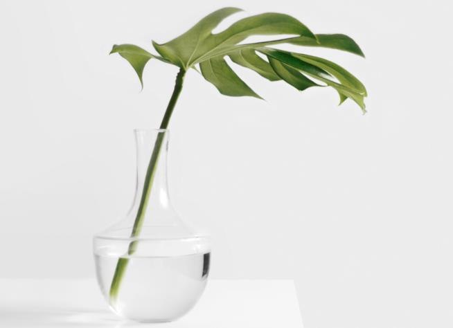 """Il minimalismo e il principio del """"quanto basta"""""""