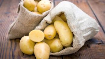 Buste con patate