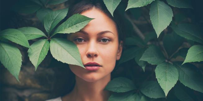 La pianta è un rimedio naturale e si prende cura delle donne