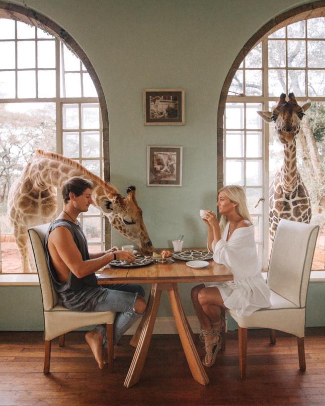 Giraffe Manor in Kenya ideale per un viaggio di nozze