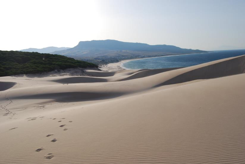 Dune Playa de Bolonia, Tarifa