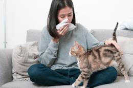 Una ragazza allergica al pelo del gatto