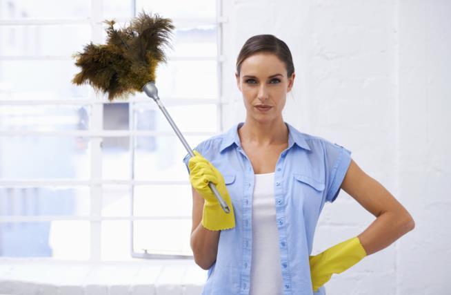 La maniaca del pulito all'opera
