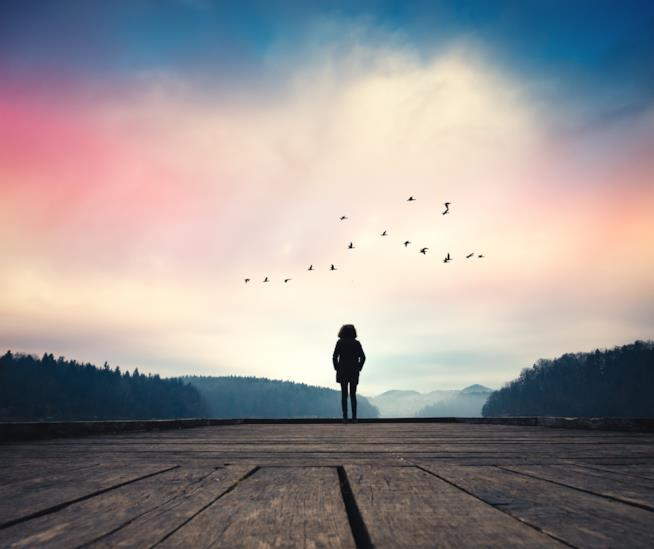 Una ragazza di spalle su un pontile osserva l'alba