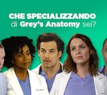 Che specializzando del Grey Sloan Memorial di Grey's Anatomy sei?