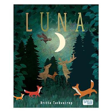 Luna - libro per bambini