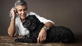 Il cane Einstein insieme a George Clooney