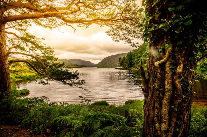 I magici laghi di Killarney