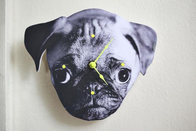 L'orologio a forma di muso del cane appeso a una parete