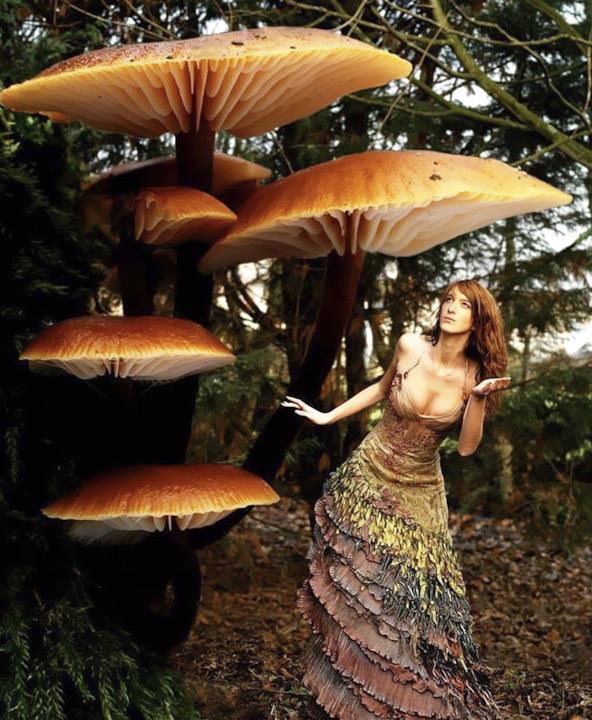 L'abito ispirato a una fata dei funghi