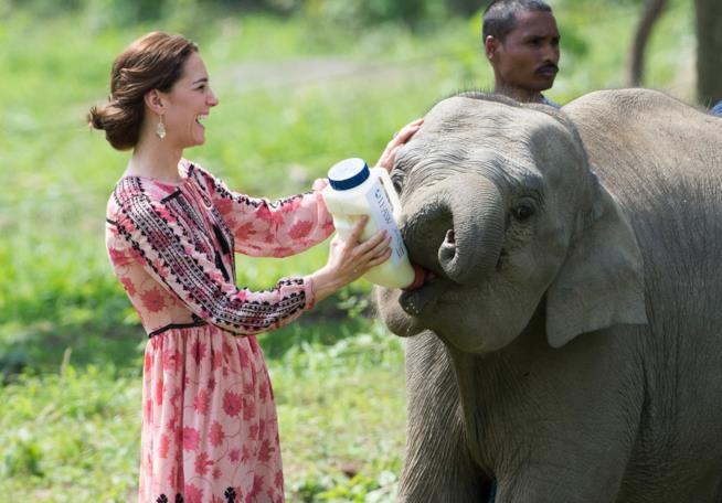 Kate Middleton durante un viaggio in India