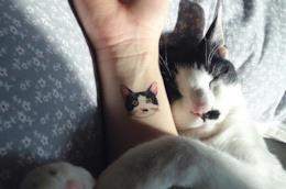 Un esempio di tatuaggio del proprio gatto sul polso di una donna