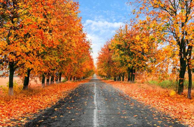 Autunno in Lombardia