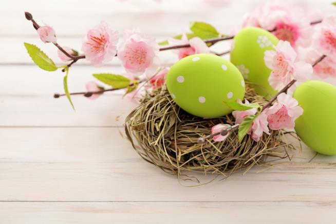 Uova dipinte su un tavolo