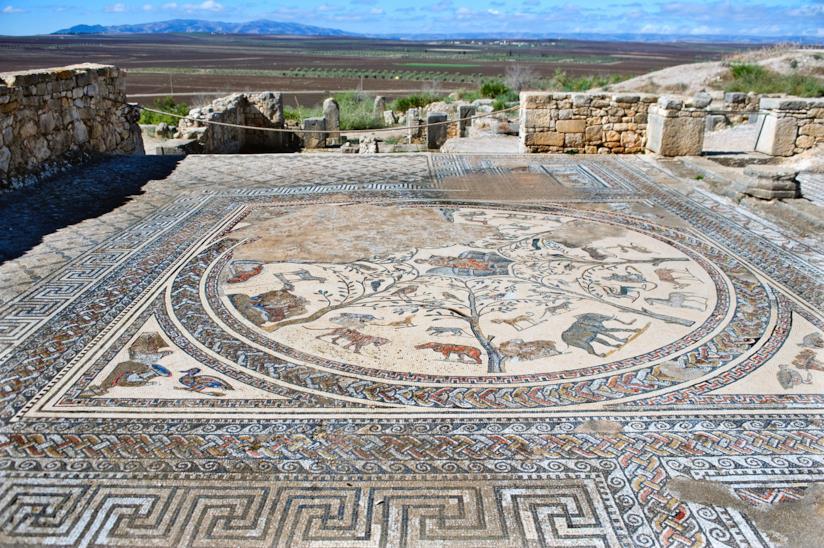Mosaici a Volubilis