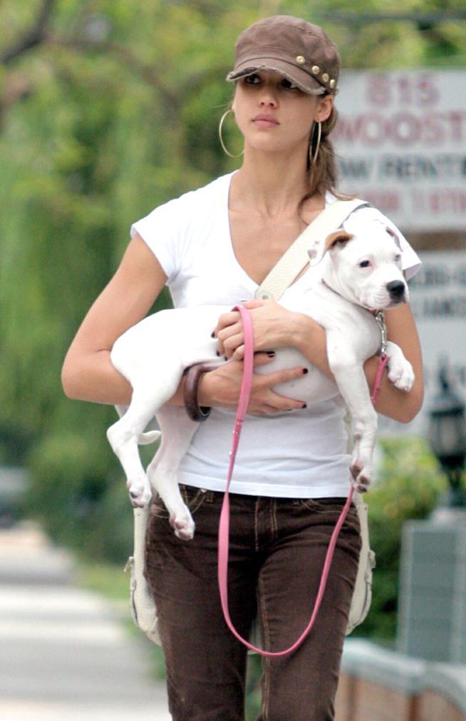Jessica Alba tiene in braccio il cane Bowie