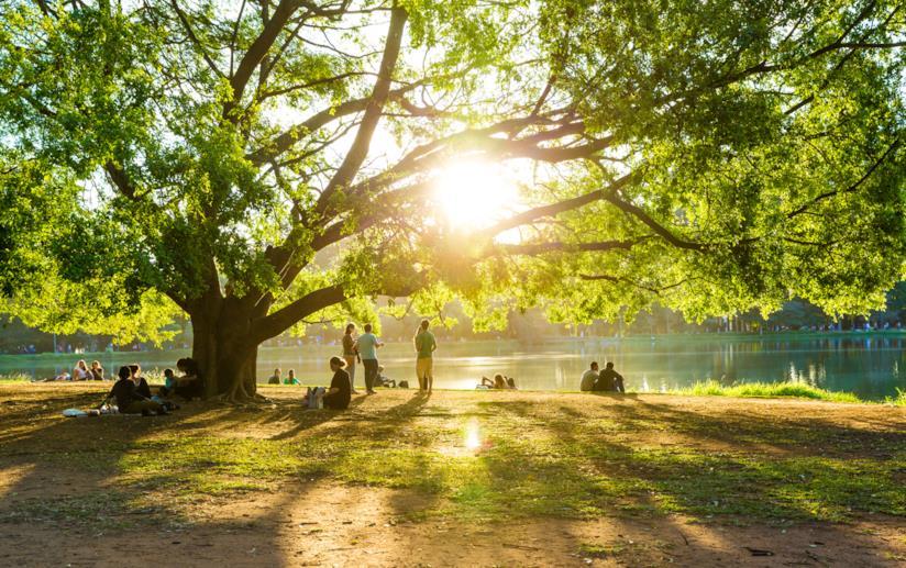 Un parco cittadino con persone