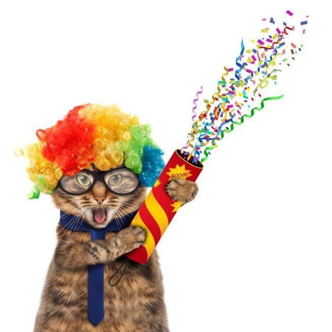 Un gatto fa esplodere coriandoli da un tubo