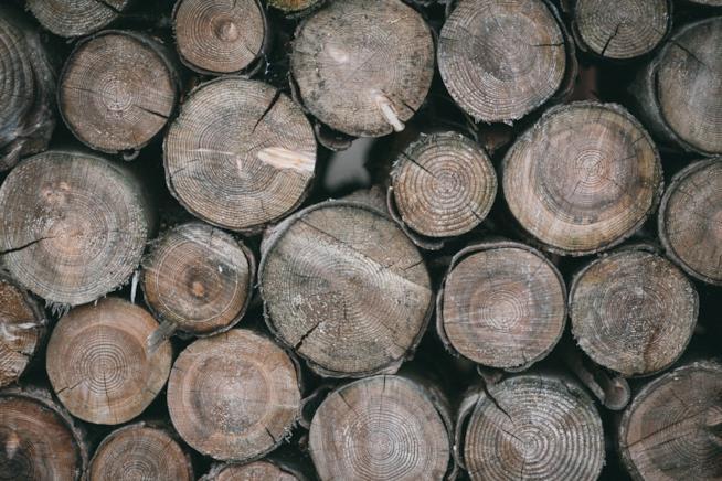 Materiale per migliori sedie da campeggio: legno