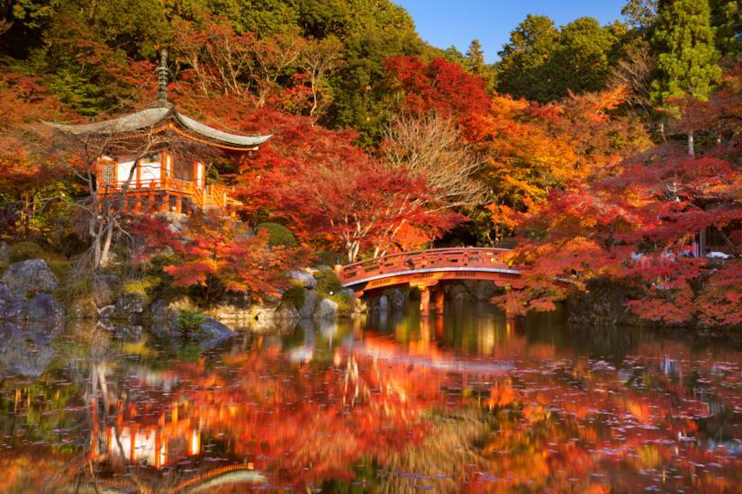 Tempio di Kyoto immerso nella magia dei colori autunnali