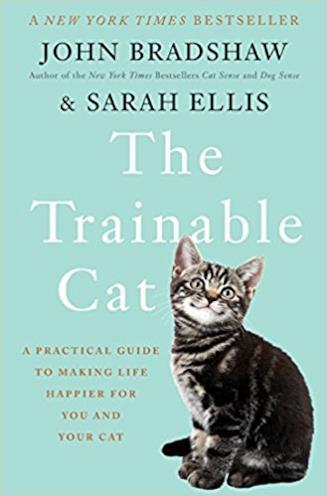 Una guida per facilitare la convivenza con i nostri gatti
