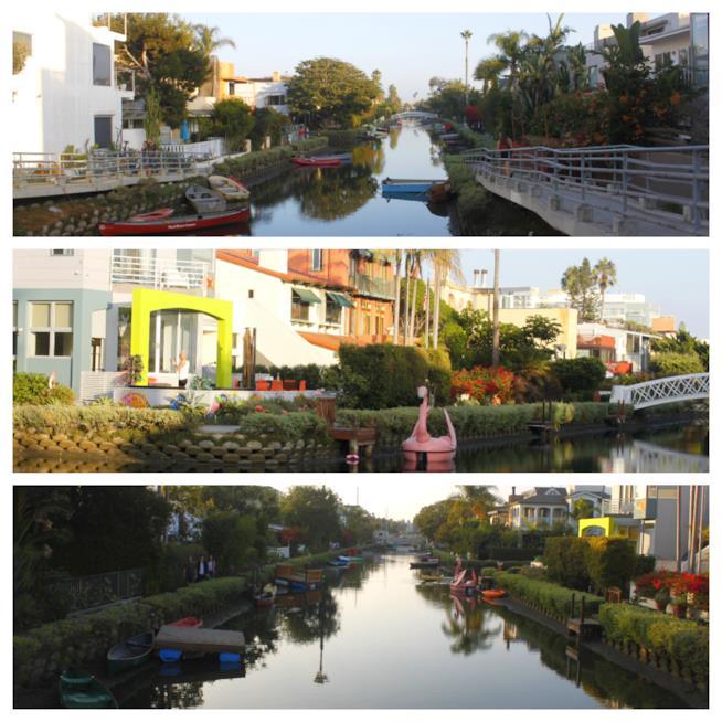 Venice e i suoi canali